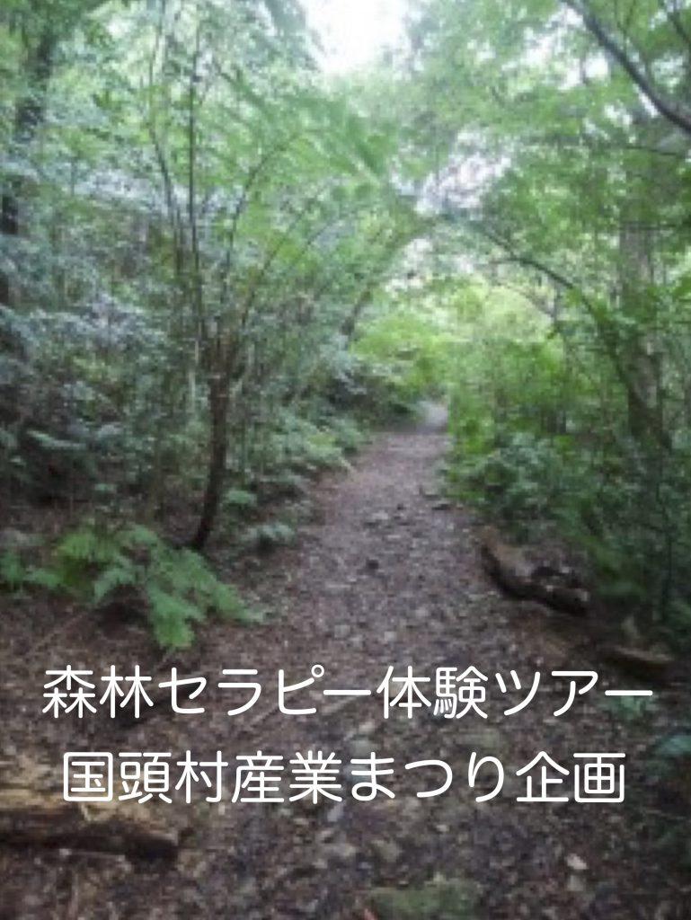 森林セラピー①